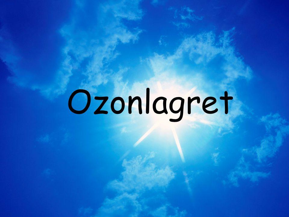 Ozonlagret
