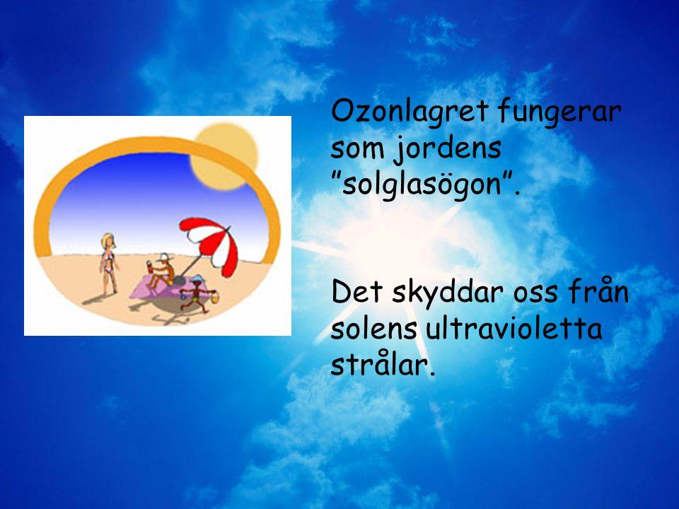 Ozonlagret fungerar som jordens solglasögon .