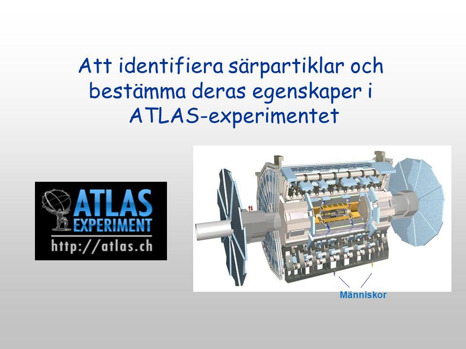 Att identifiera särpartiklar och bestämma deras egenskaper i ATLAS-experimentet