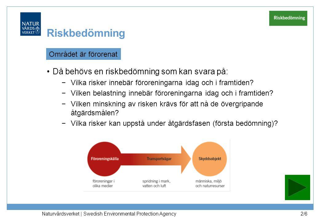 Riskbedömning Då behövs en riskbedömning som kan svara på: