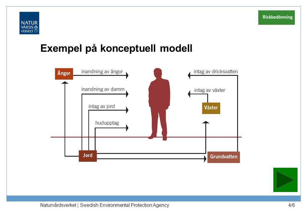 Exempel på konceptuell modell