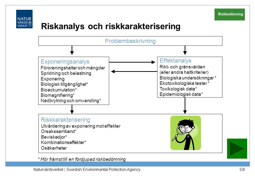Riskanalys och riskkarakterisering