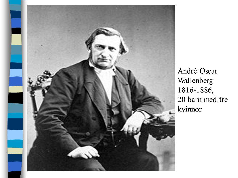 André Oscar Wallenberg 1816-1886,