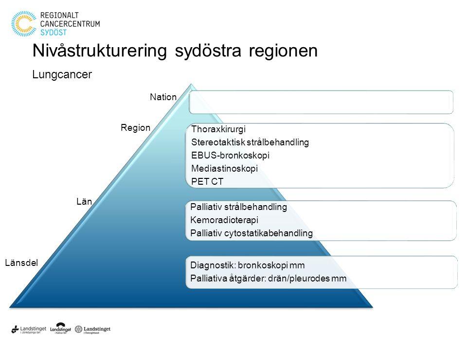 Nivåstrukturering sydöstra regionen