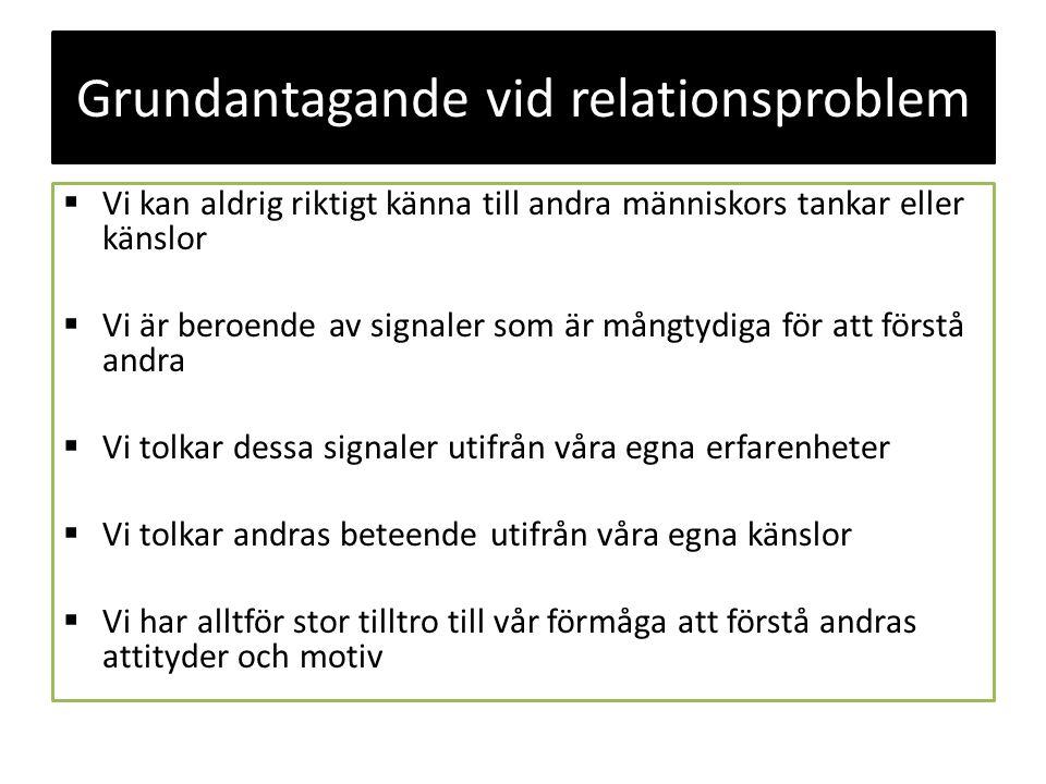 Grundantagande vid relationsproblem