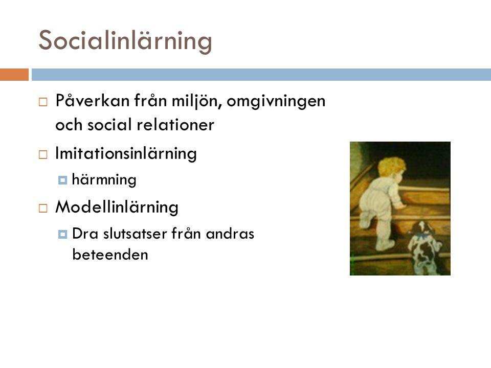 Socialinlärning Påverkan från miljön, omgivningen och social relationer. Imitationsinlärning. härmning.