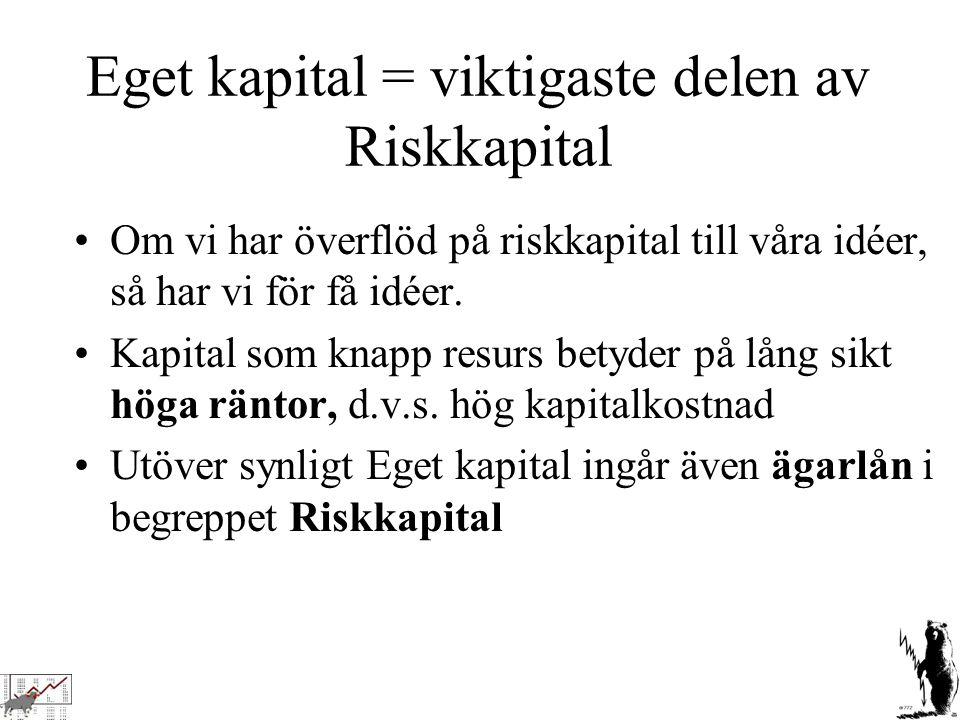 Eget kapital = viktigaste delen av Riskkapital