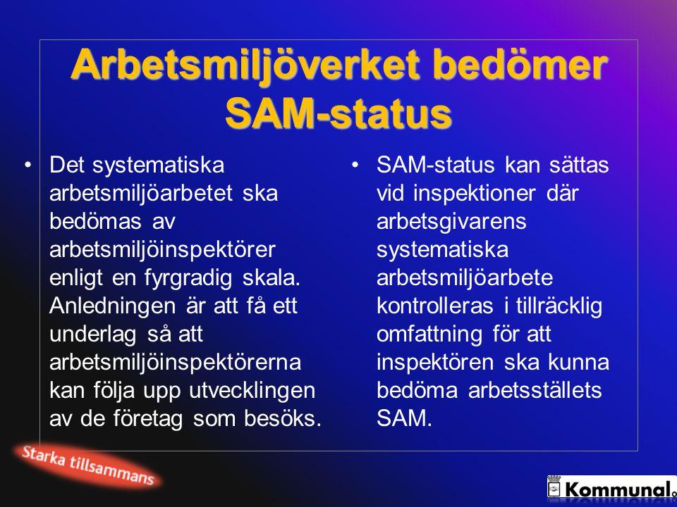 Arbetsmiljöverket bedömer SAM-status