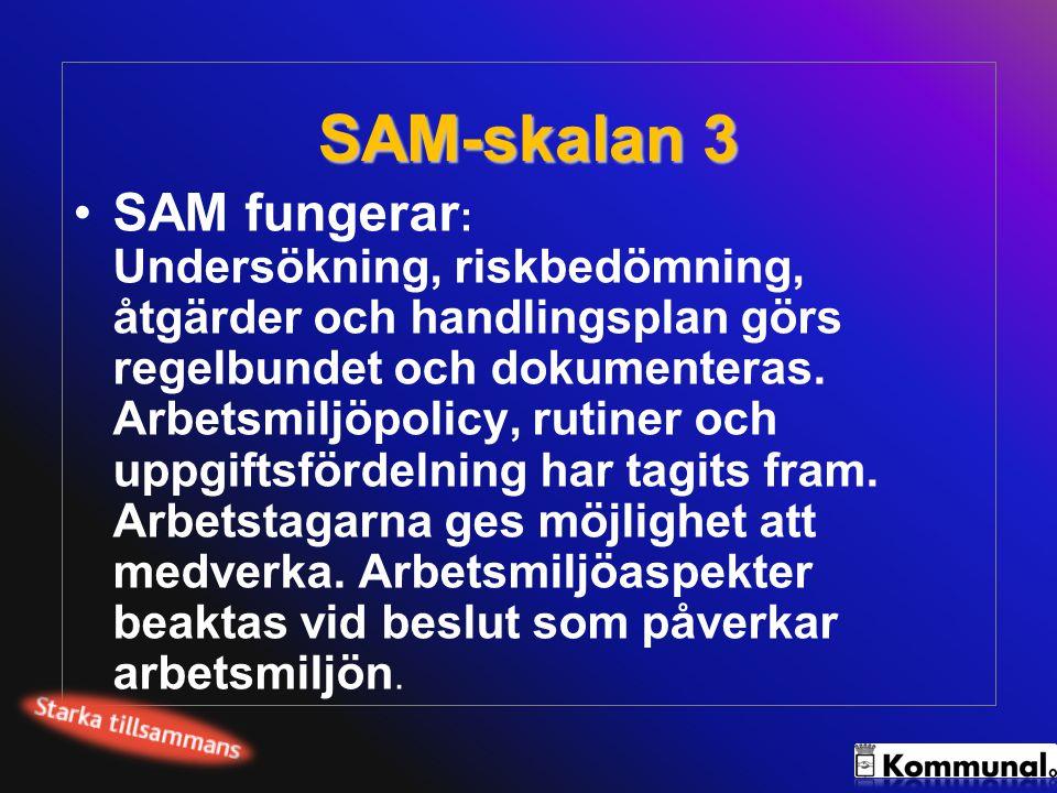 SAM-skalan 3