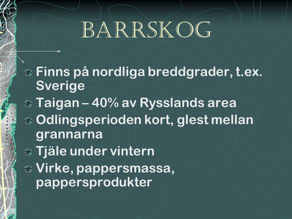 barrSkog Finns på nordliga breddgrader, t.ex. Sverige