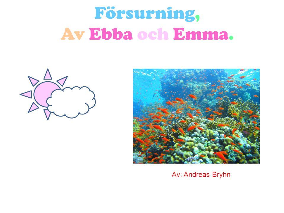 Försurning, Av Ebba och Emma.