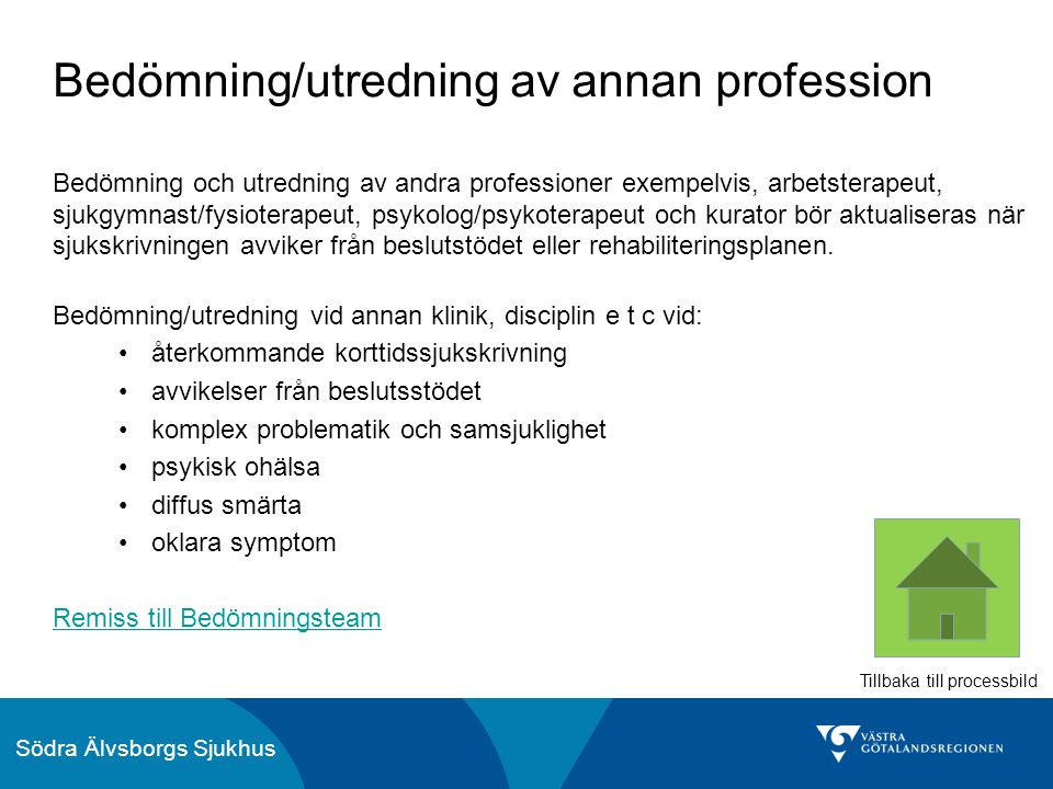 Bedömning/utredning av annan profession