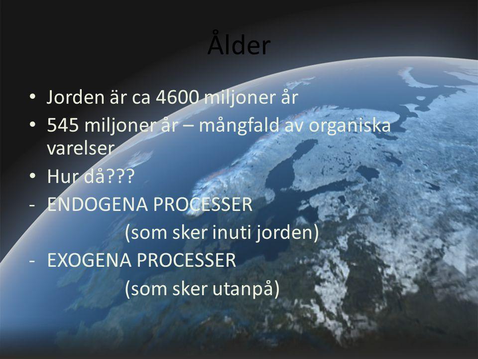 Ålder Jorden är ca 4600 miljoner år