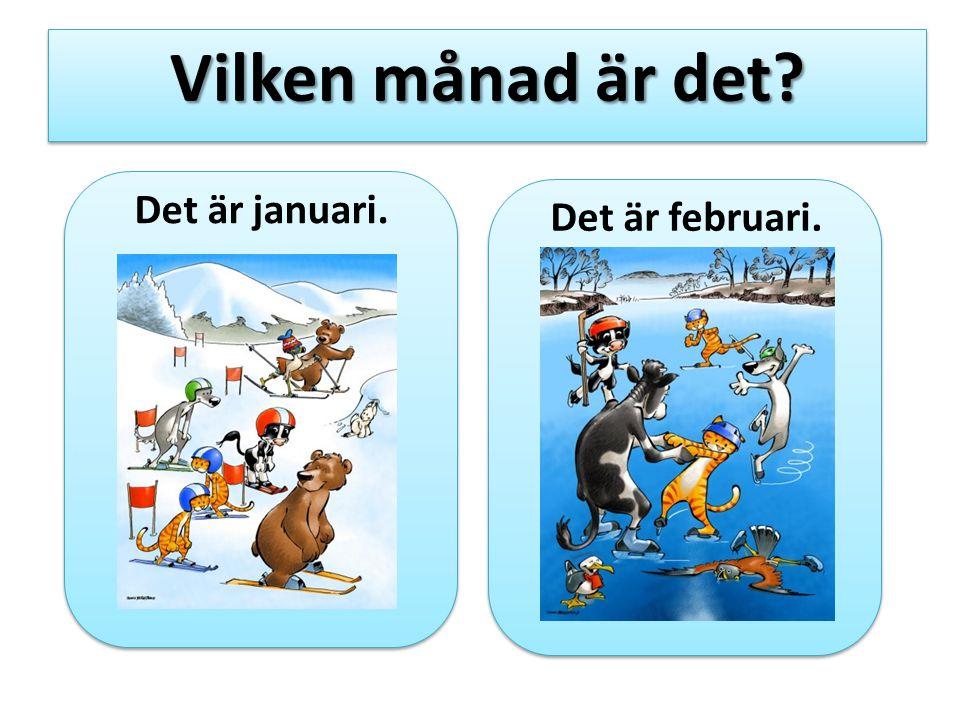 Vilken månad är det Det är januari. Det är februari.