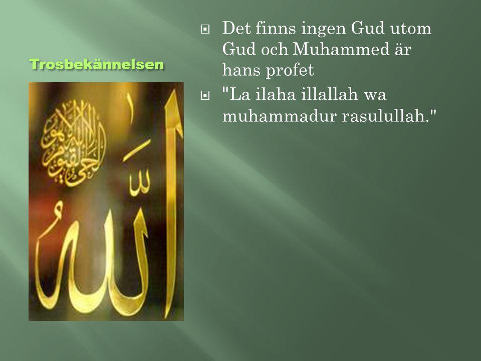 Det finns ingen Gud utom Gud och Muhammed är hans profet