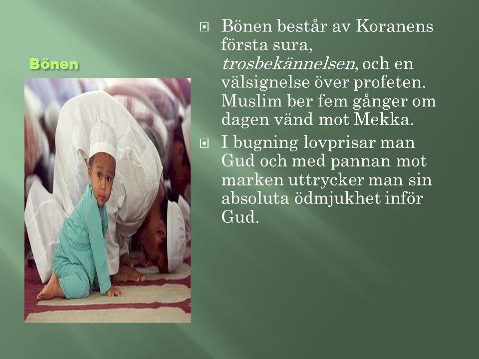 Bönen Bönen består av Koranens första sura, trosbekännelsen, och en välsignelse över profeten. Muslim ber fem gånger om dagen vänd mot Mekka.