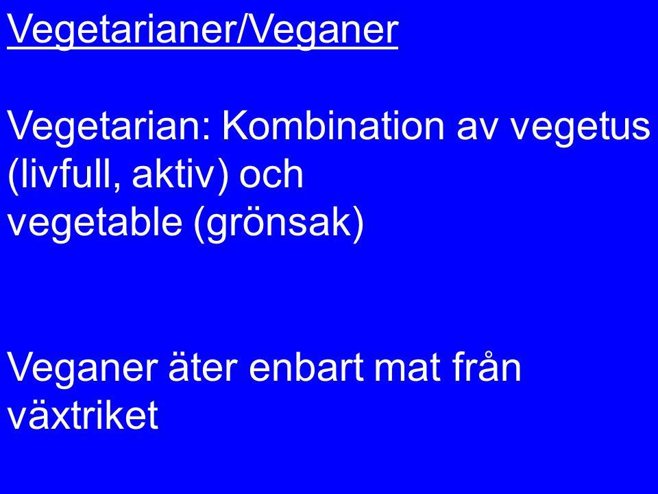Vegetarianer/Veganer