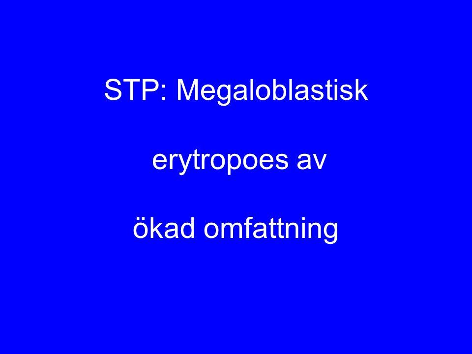 STP: Megaloblastisk erytropoes av ökad omfattning