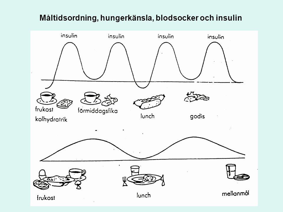 Måltidsordning, hungerkänsla, blodsocker och insulin