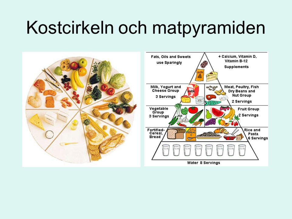 Kostcirkeln och matpyramiden