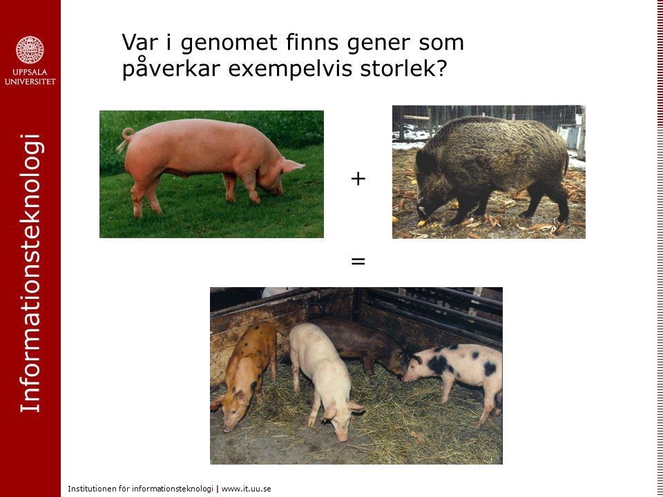Var i genomet finns gener som