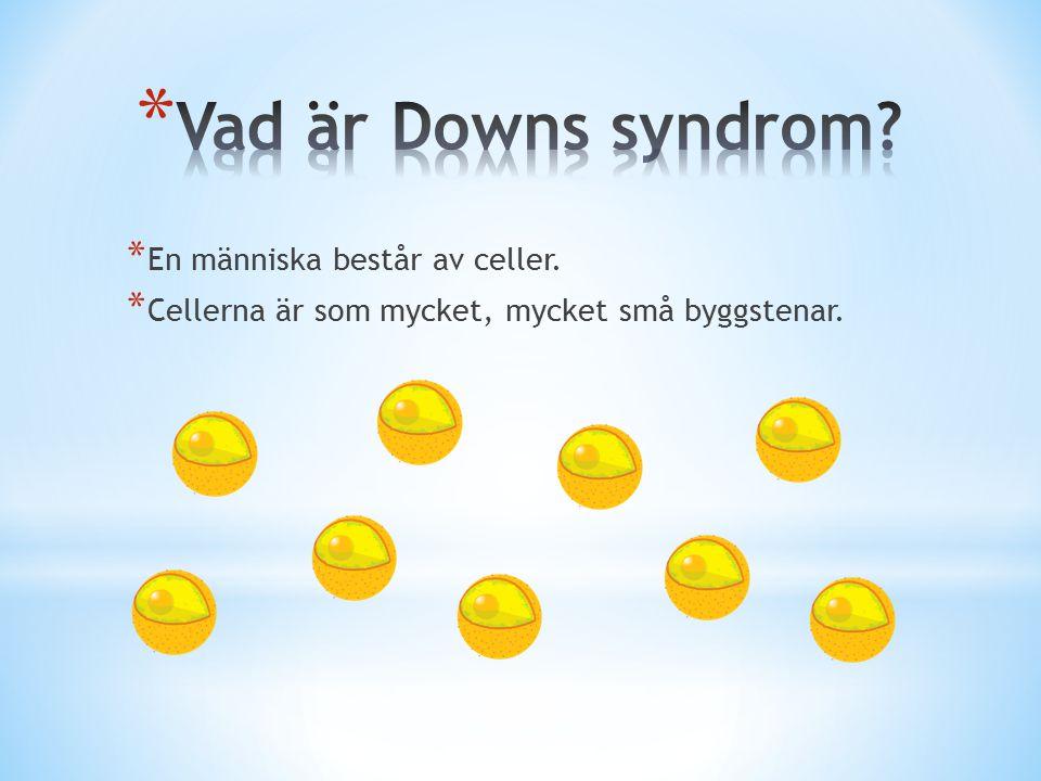 Vad är Downs syndrom En människa består av celler.