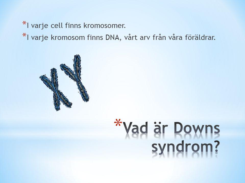 Vad är Downs syndrom I varje cell finns kromosomer.