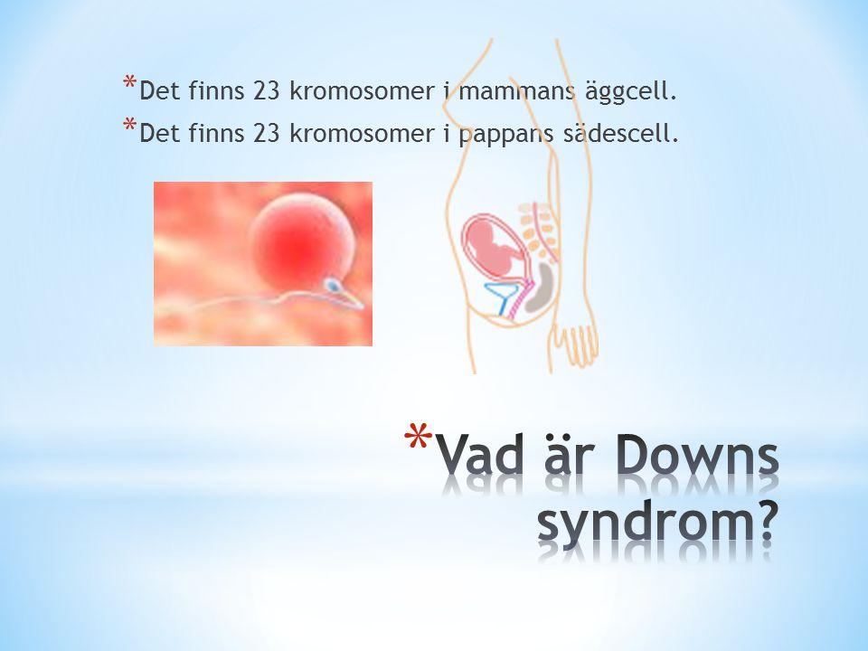 Vad är Downs syndrom Det finns 23 kromosomer i mammans äggcell.