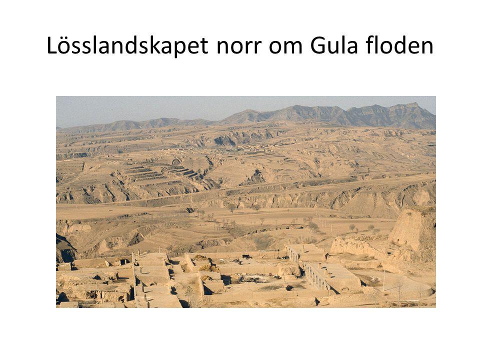 Lösslandskapet norr om Gula floden