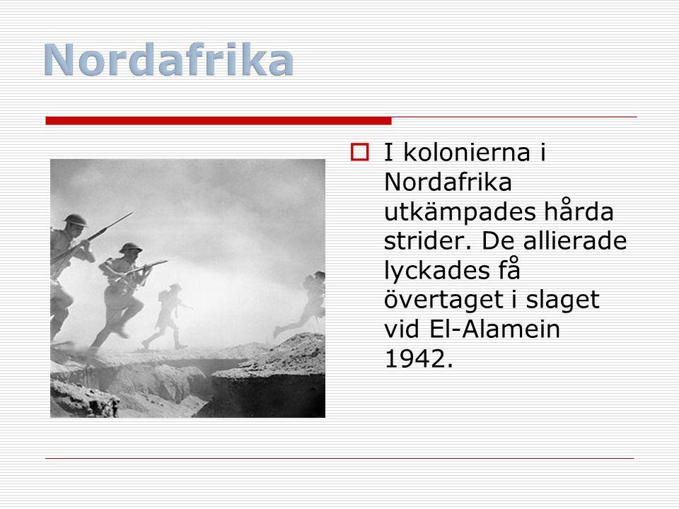 Nordafrika I kolonierna i Nordafrika utkämpades hårda strider.