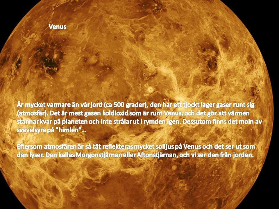 Venus Venus.