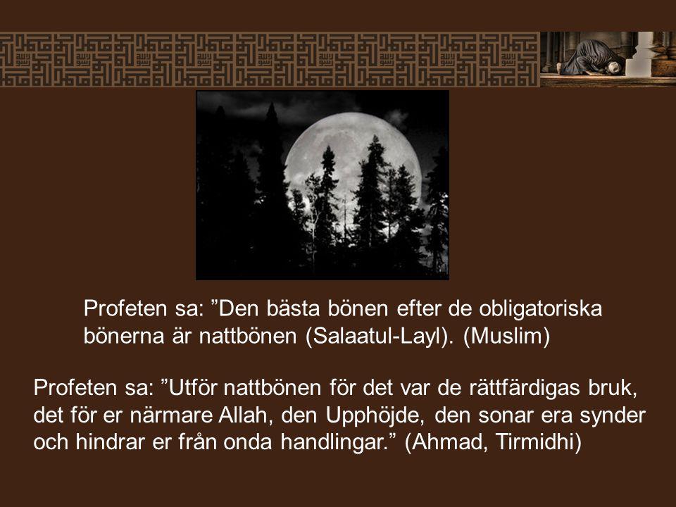 Profeten sa: Den bästa bönen efter de obligatoriska bönerna är nattbönen (Salaatul-Layl). (Muslim)