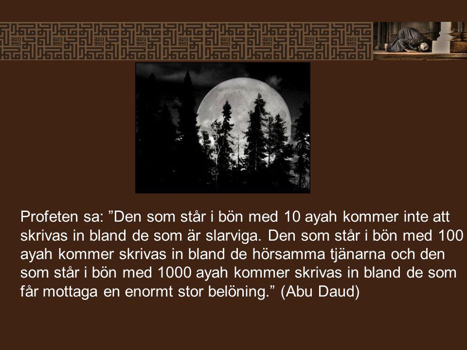 Profeten sa: Den som står i bön med 10 ayah kommer inte att skrivas in bland de som är slarviga.