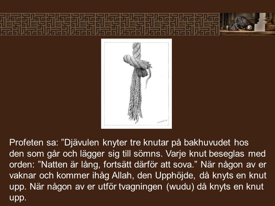 Profeten sa: Djävulen knyter tre knutar på bakhuvudet hos den som går och lägger sig till sömns.