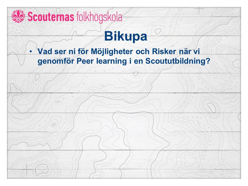 Bikupa Vad ser ni för Möjligheter och Risker när vi genomför Peer learning i en Scoututbildning