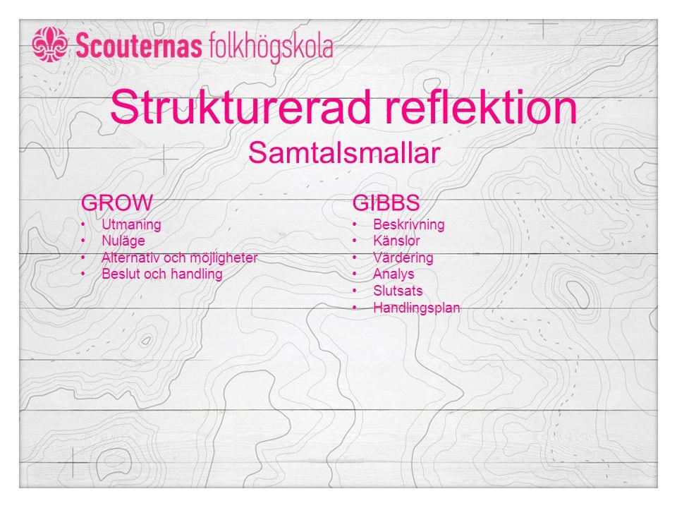 Strukturerad reflektion Samtalsmallar