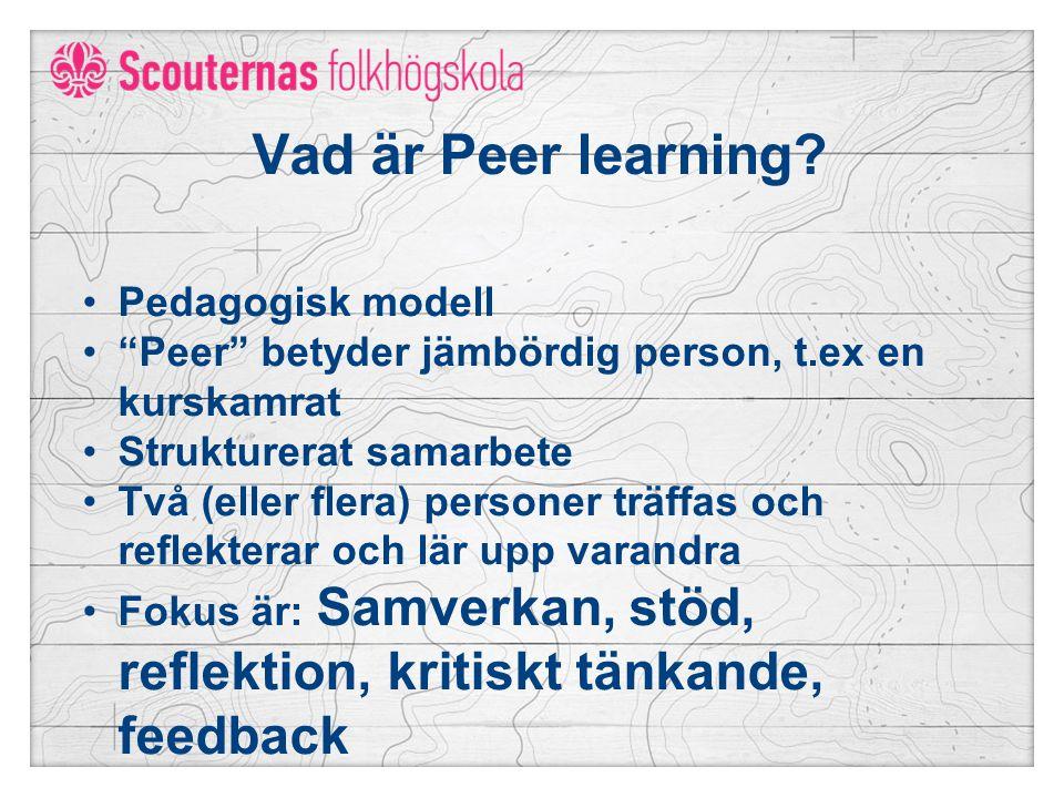 Vad är Peer learning Pedagogisk modell
