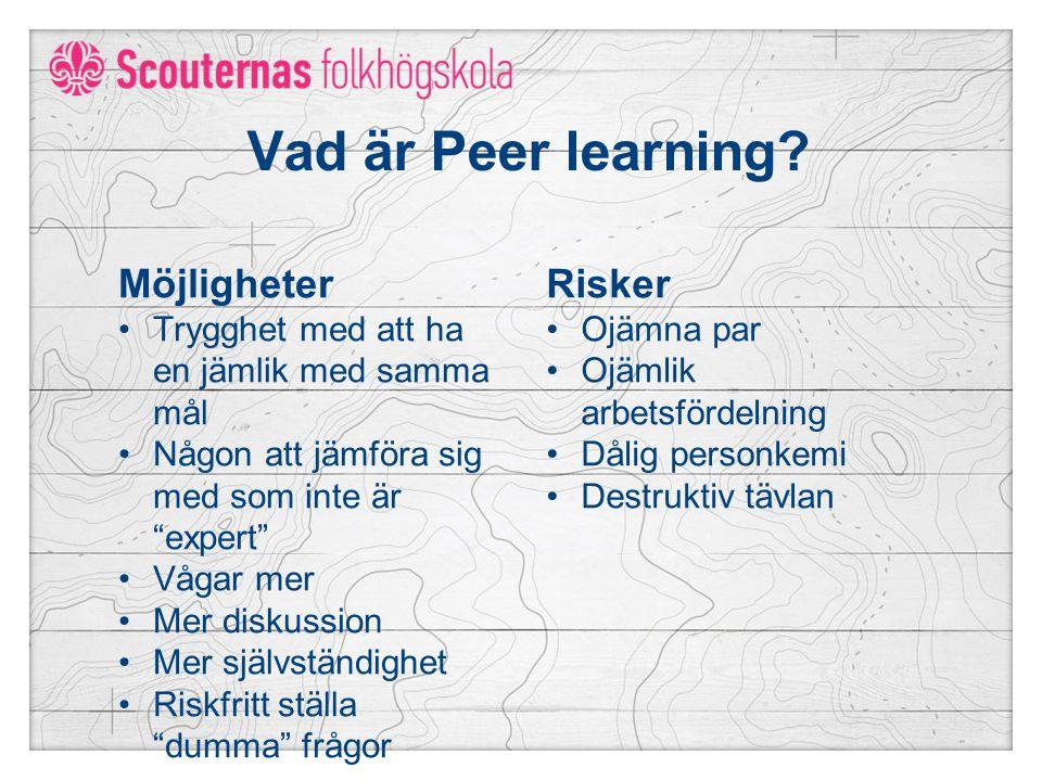 Vad är Peer learning Möjligheter Risker