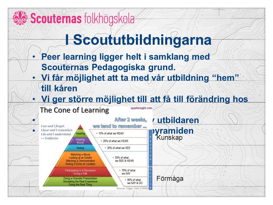 I Scoututbildningarna