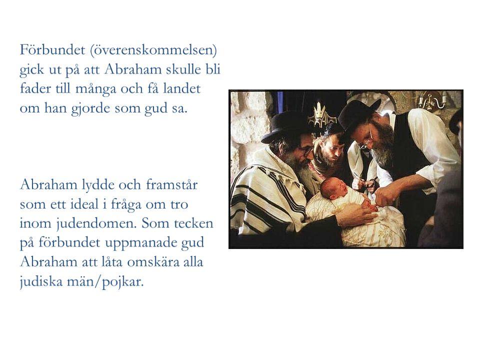 Förbundet (överenskommelsen) gick ut på att Abraham skulle bli fader till många och få landet om han gjorde som gud sa.