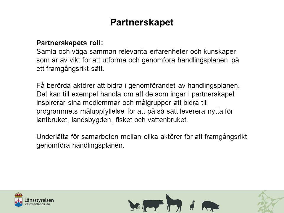 Partnerskapet Partnerskapets roll: