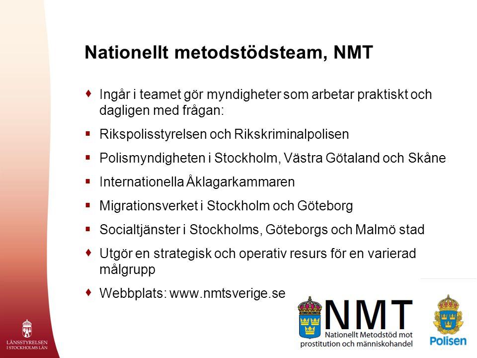 Nationellt metodstödsteam, NMT