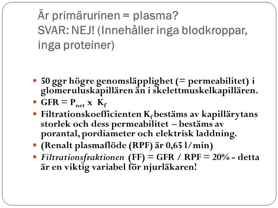 Är primärurinen = plasma. SVAR: NEJ