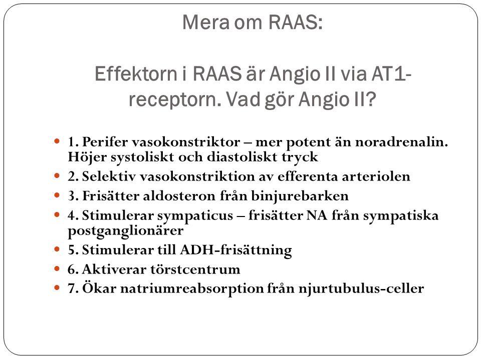 Mera om RAAS: Effektorn i RAAS är Angio II via AT1-receptorn