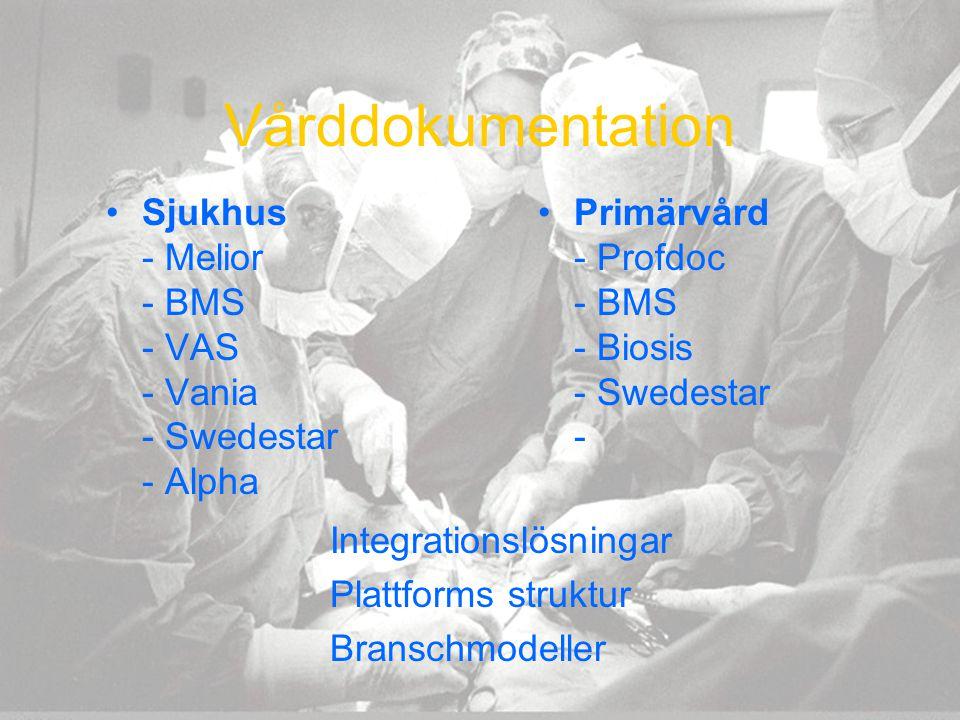 Vårddokumentation Sjukhus - Melior - BMS - VAS - Vania - Swedestar - Alpha. Primärvård - Profdoc - BMS - Biosis - Swedestar -