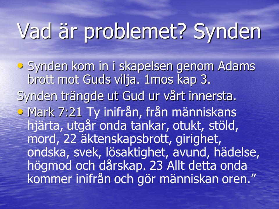 Vad är problemet Synden