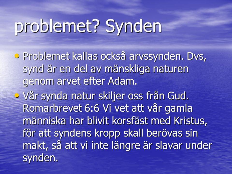 problemet Synden Problemet kallas också arvssynden. Dvs, synd är en del av mänskliga naturen genom arvet efter Adam.