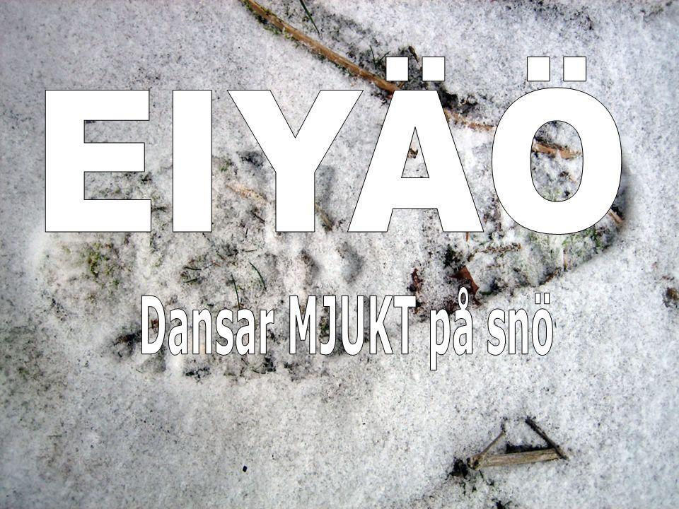 EIYÄÖ Dansar MJUKT på snö