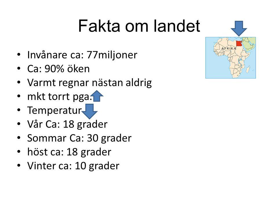 Fakta om landet Invånare ca: 77miljoner Ca: 90% öken