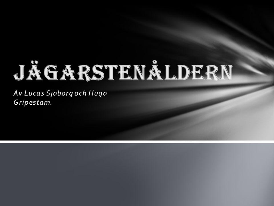 Av Lucas Sjöborg och Hugo Gripestam.